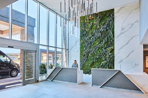 Front Desk Living Wall